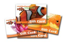 Maidenhead Aquatics Gift Card- the Perfect Gift