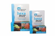 Aquarium Münster Hexamor (anti hole-in-the-head - 20ml)
