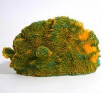 Blue Ribbon Lettuce Coral Ornament - Green - Medium