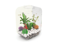 BiOrb Exclusive Life 15 Portrait Aquarium (White)