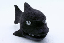 SuperFish Marine Fun - Black Shark