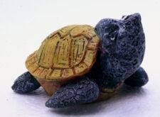 SuperFish Marine Fun - Turtle Boy