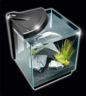NEWA More 20 Aquarium