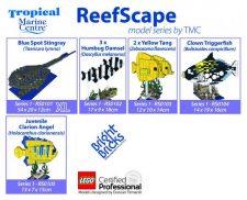 TMC Reefscape Models - Complete Series 1 (5 models)