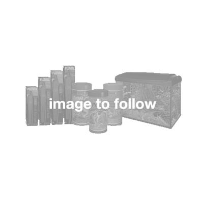 Default Image1007