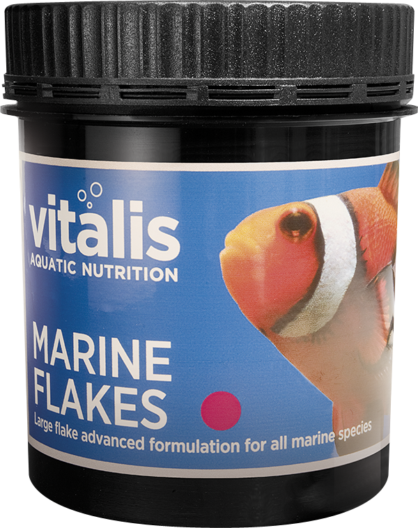 Marine Flakes Medium