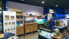 AshfordStore1