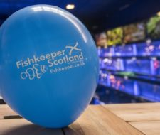 Scotland Anniversary Weekend