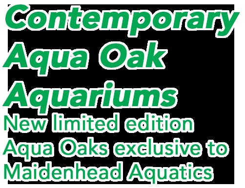 AquaOakText.png#asset:117463