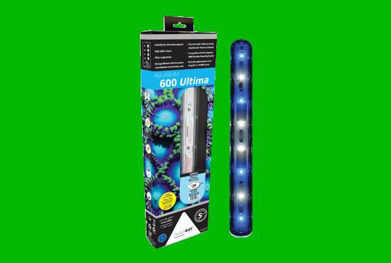 Lighting & Accessories