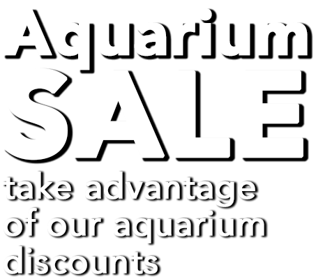 Aquarium-Sale-Text.png#asset:120585