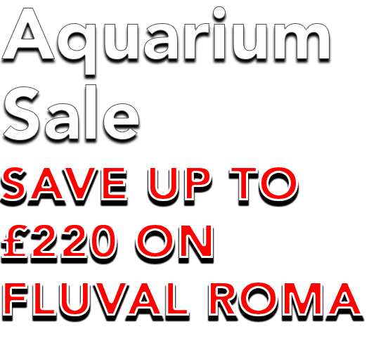 Fluval-Roma-Sale.png#asset:111542
