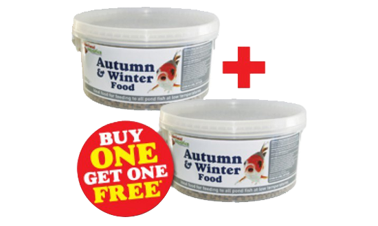 Autumn/Winter Foods