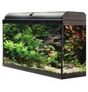 AquaTropic 60 Aquarium