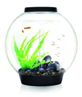 BiOrb Classic MCR 60 Black with Multi-Colour Remote Control Lighting