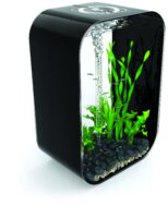 BiOrb Life MCR 60 Black with Multi-Colour Remote Controlled Lighting