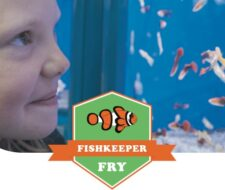 What are the benefits of Fishkeeper Fry?