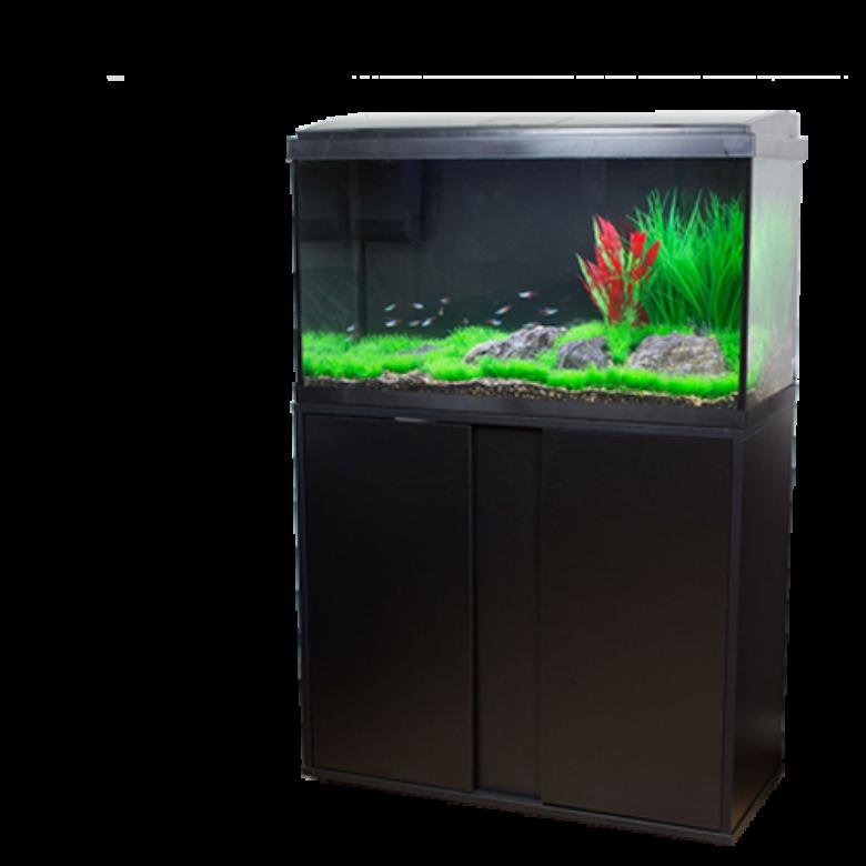 A Perfect Starter KitNew Aquatropic LED Aquariums