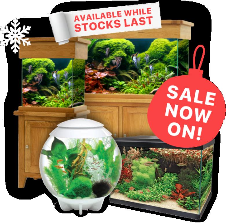 WinterAquarium Sale