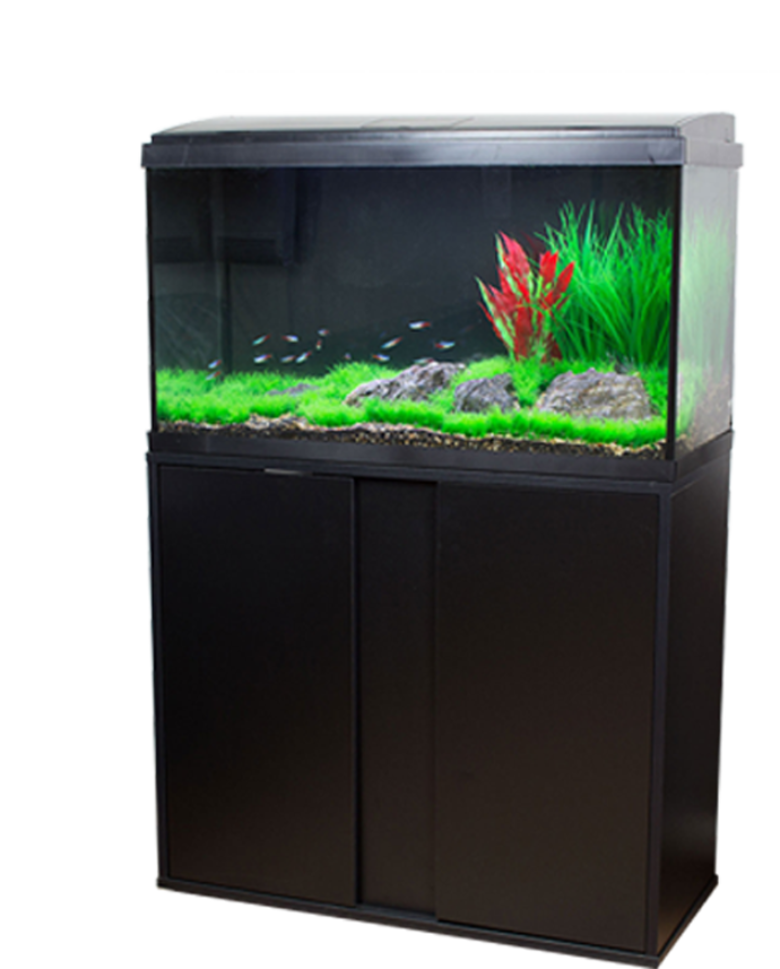 A Perfect Starter KitNew Aquatropic LED Aquariums