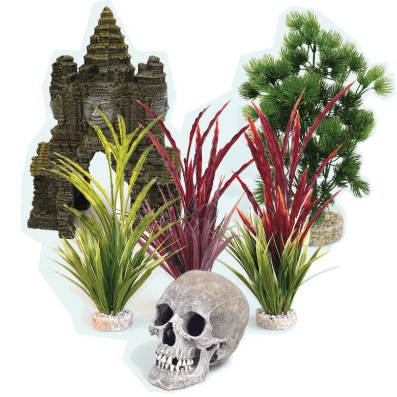 Special offers onPlants & Ornaments