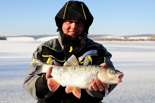 Рыболовный отчет Константин Кудинов Зимний голавль? Нечасто, но бывает!