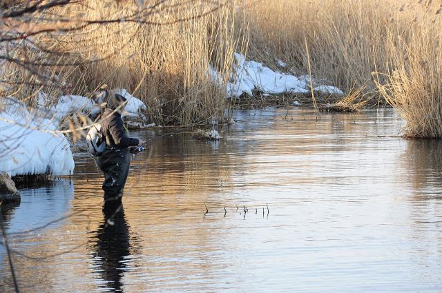Рыболовный отчет Константин Кудинов По нулям