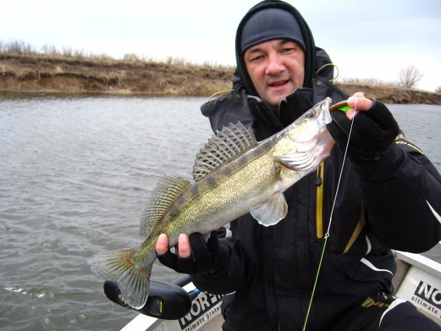 Рыболовный отчет Константин Кудинов Трудовой судачок