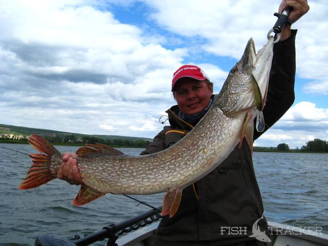 Рыболовный отчет Константин Кудинов Работа над ошибками. Неприлично хорошо-3
