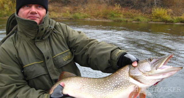 рыбалка на щуку в саратовской обл