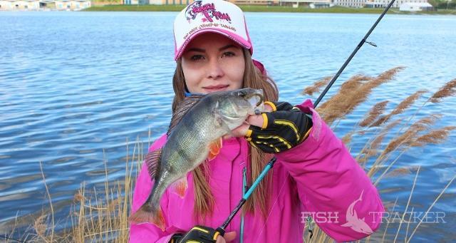 Новиночка от Crazy Fish Inspire 662UL