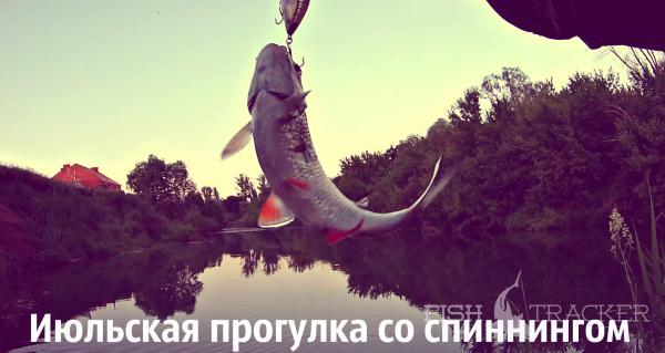 Отчет о рыбалке 02.07.2016