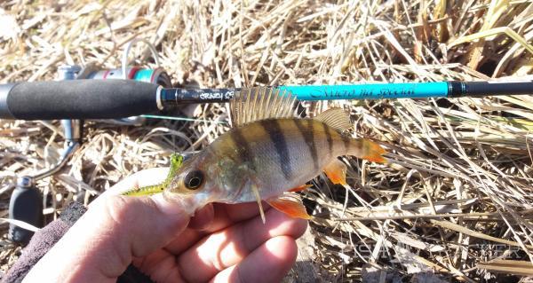 Рыбалка бывает разная