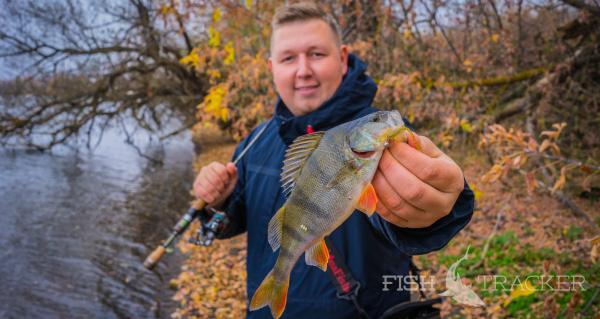 Обеденная рыбалка