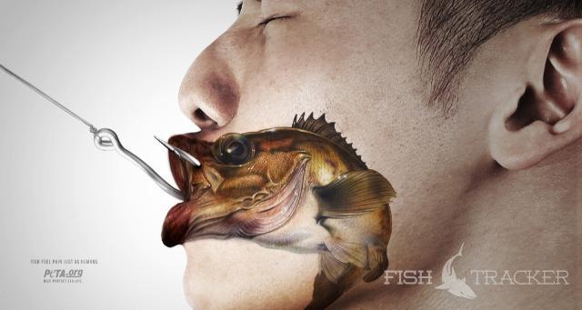 Чувствует ли рыба боль?