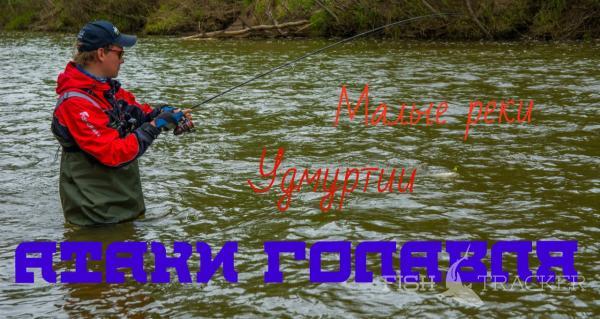 Атаки головля. Рыбалка на малых реках Удмуртии