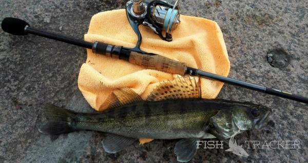 Отчет о рыбалке 15.08.2016