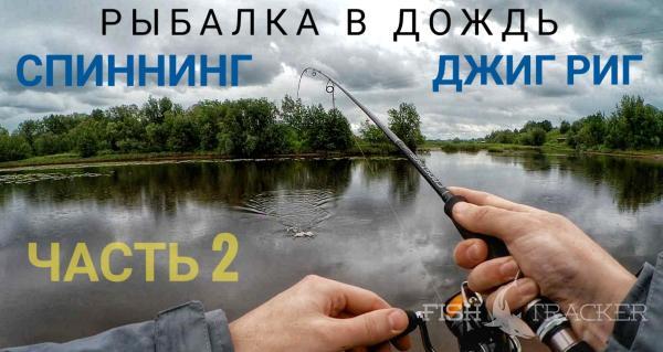 Рыбалка в дождь. Спиннинг. Джиг риг.