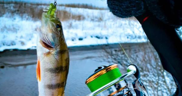 Зимний спиннинг. Открытие сезона. Рыбалка 2021