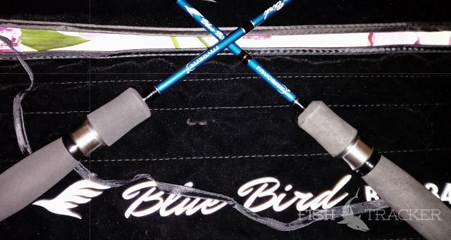 Обзор Favorite Bluebird Compact 634 ul-t/s