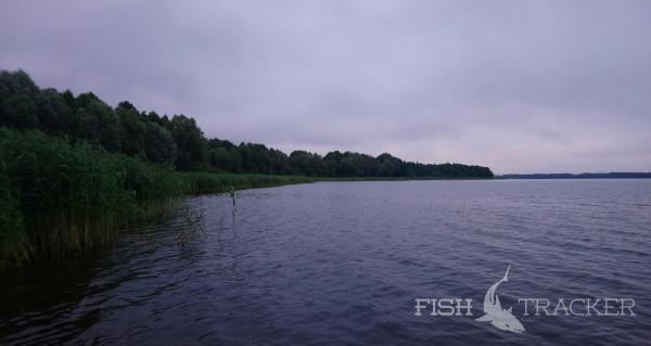 Без результативная рыбалка