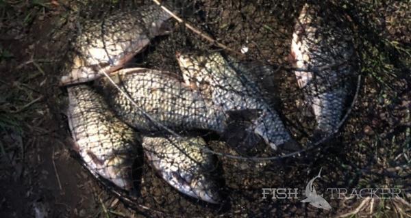 Отчет о рыбалке 08.05.2019