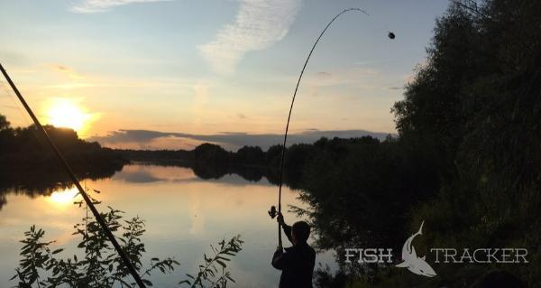 Отчет о рыбалке 21.07.2019