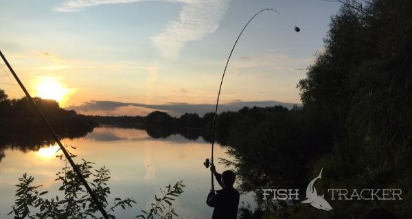 Отчет о рыбалке 14.08.2019