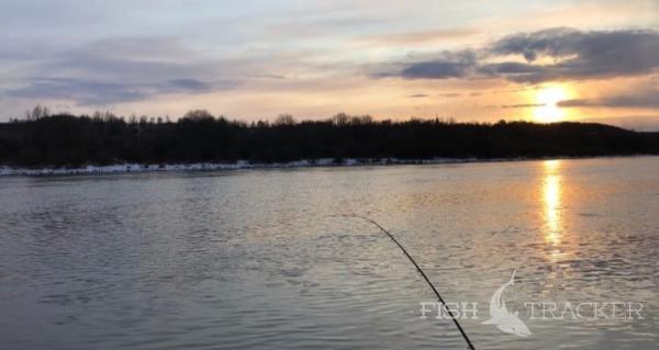 Отчет о рыбалке 22.05.2020