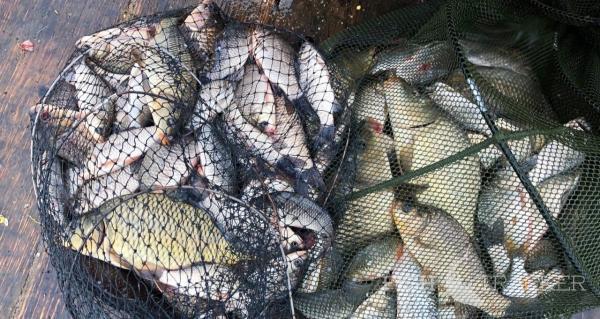 Отчет о рыбалке 05.06.2020