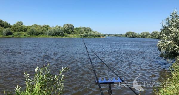 Отчет о рыбалке 15.07.2020