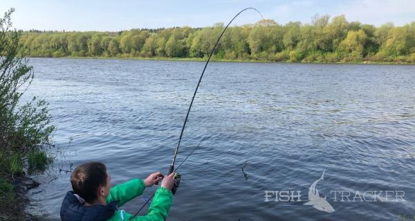 Отчет о рыбалке 22.07.2020