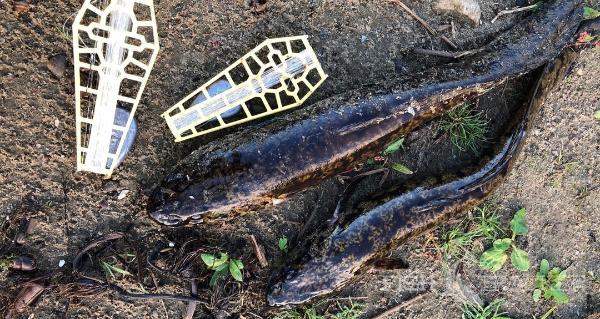 Отчет о рыбалке 21.10.2020