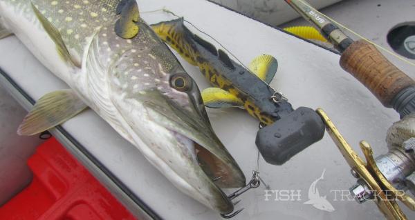 Отчет о рыбалке 27.09.2017